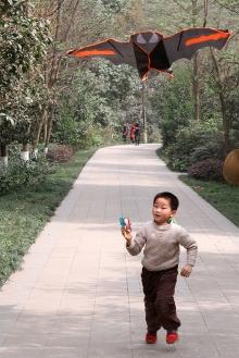 放风筝的少年